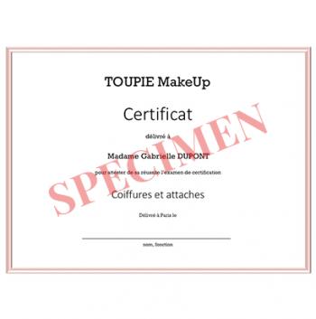 L'examen de certification - Coiffures et attaches